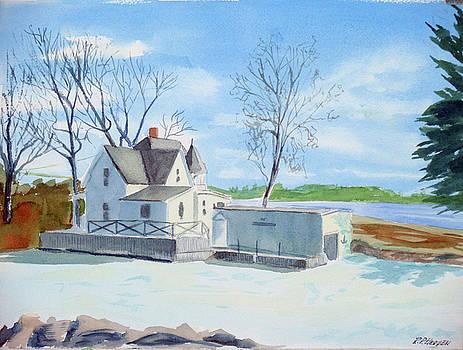 Island Kate by Robert P Hedden