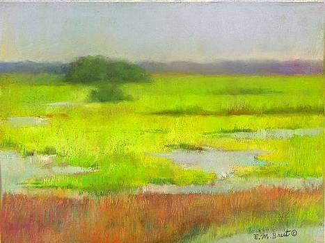 Island Marshes by Evelyn  M  Breit