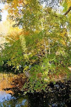 Robert Meyers-Lussier - Island of Autumn