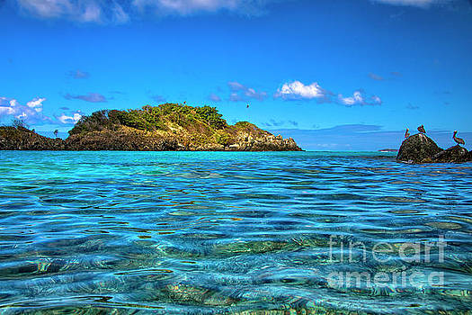 Island Paradise by Mariola Bitner