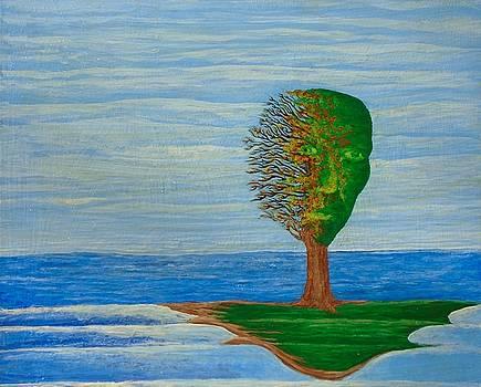 Island by Steve  Hester