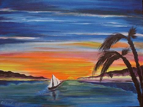 Island sunset by Colin O neill