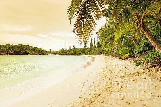 Tim Hester - Isle Of Pines