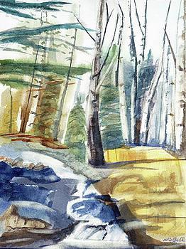 Isle Royale Stream by Randy Bell