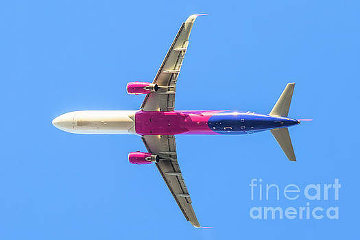 Isolated Pink Airplane by Benny Marty