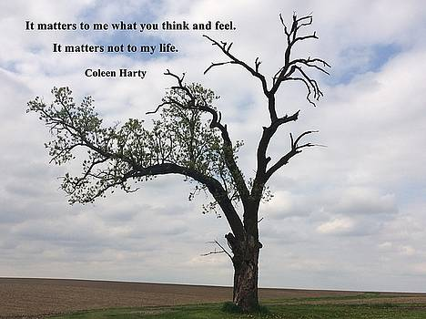 It Matters by Coleen Harty