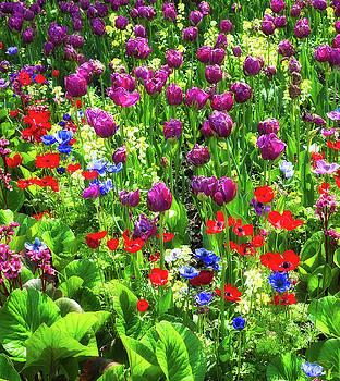 Paul W Sharpe Aka Wizard of Wonders - It Takes a Mix to Make a Garden