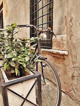 Italian Alleyway by Julia Raddatz