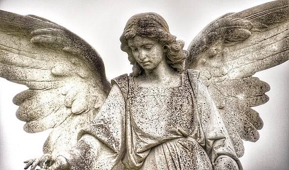Italian Cemetery Angel by Gia Marie Houck