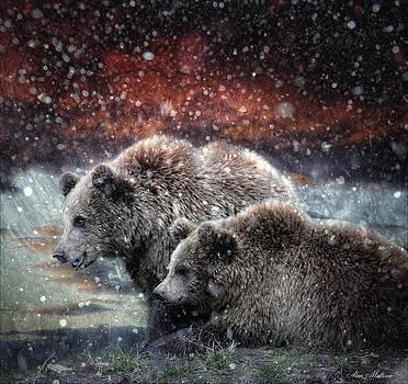 It's barely winter by Alan Mattison