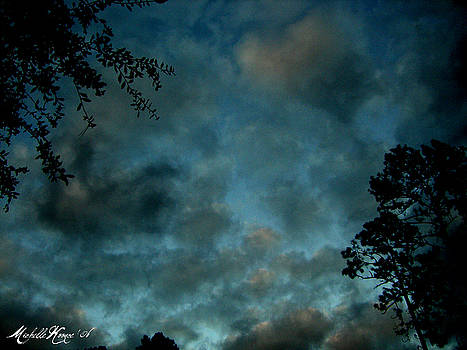 It's Cloud's Illusions I Recall by Michelle Koonce