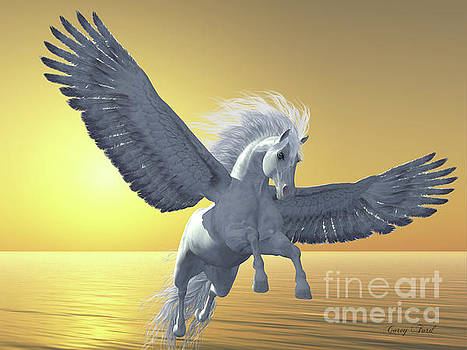 Corey Ford - Ivory Pegasus