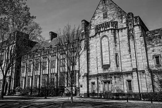 Karol Livote - Ivy League