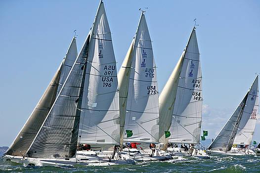 Steven Lapkin - J105s Rolex Big Boat Series