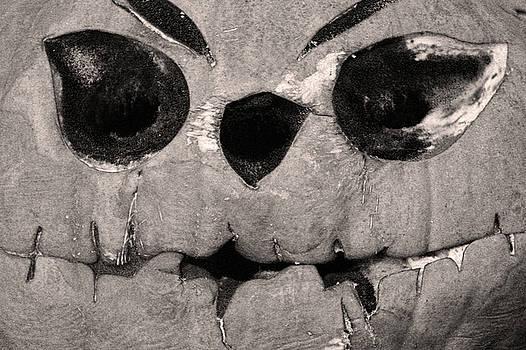 Jack O' Lantern by Carol Tsiatsios
