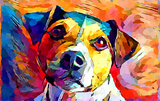 Jack Russell Terrier by Chris Butler