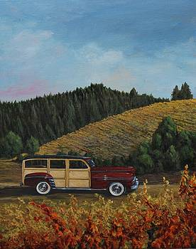 Jackass Woodie by Beth Maddox