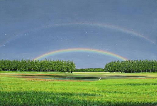 Jack's Track Rainbow by Stacey Breheny