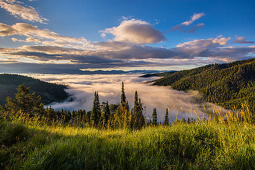 Jackson Hole From Above by Adam Mateo Fierro