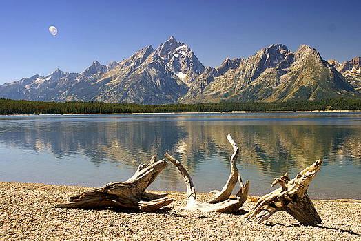 Marty Koch - Jackson Lake 3