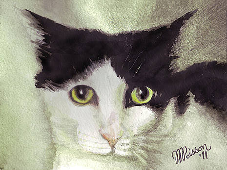 Jackson The Cat by Jean-Marie Poisson