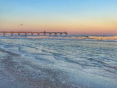 Jacksonville Florida Beach Sunset by Carol Mellema