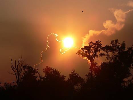Jacksonville Sunset by Rollie Kraus