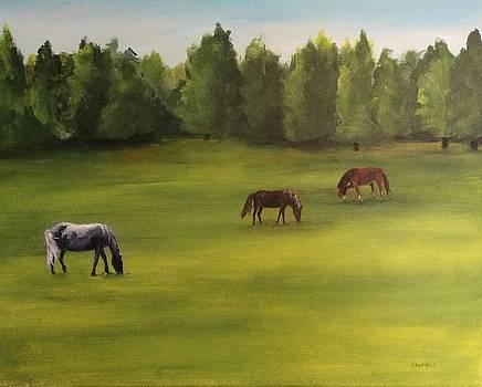 Jacob's Pasture by Ellen Canfield