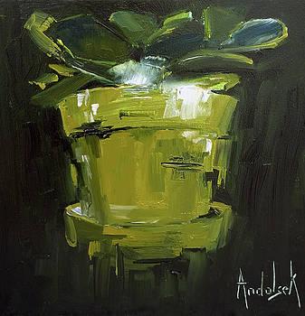 Jaded by Barbara Andolsek