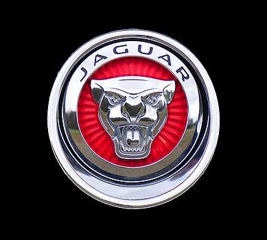 Jaguar Emblem by Ericamaxine Price
