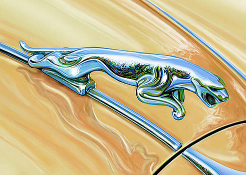 Jaguar Hood Cat by David Kyte