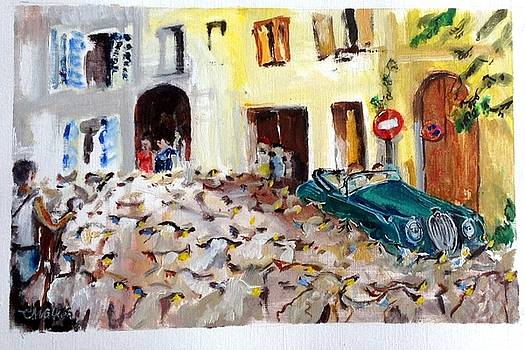 Jaguar in the Flock  Transhumance at Vinon sur Verdon by Chris Walker