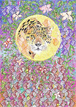 Jaguar Night by Doug Johnson