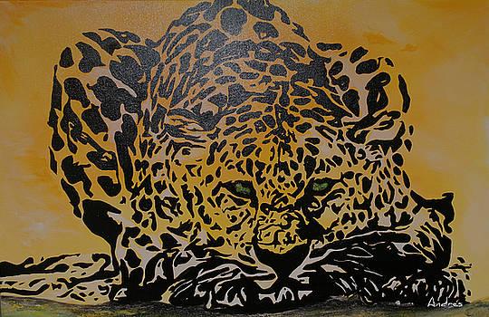 Jaguar Prowling by Andres Gonzalez