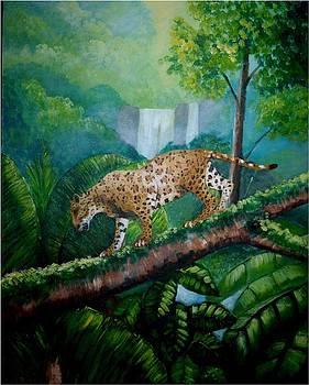 Jaguar waking in the wild forest by Jean Pierre Bergoeing