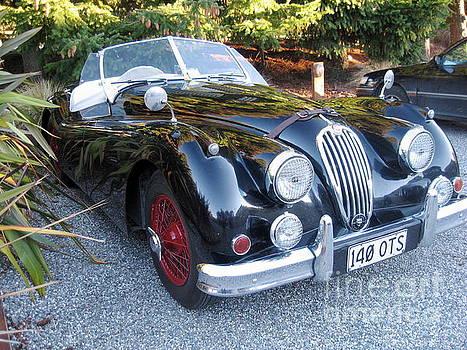 Jaguar140_OTS by Kathryn Barry