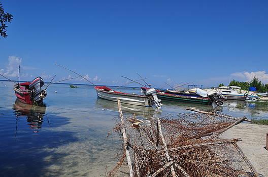Jamaica Fishing by D Hood
