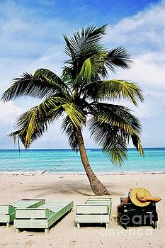 Jamaica Zen by Glennis Siverson