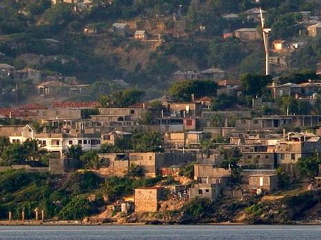 Jamaican Hillside by Arlane Crump