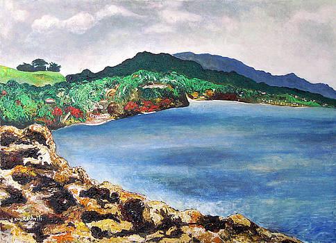 Jamaican seaview by Vladimir Kezerashvili
