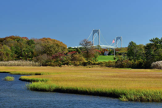 Jamestown Marsh with Pell Bridge by Nancy De Flon