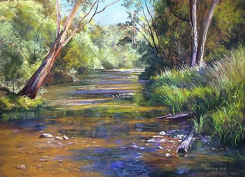 Jamieson River by Lynda Robinson