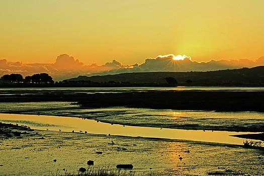 Martina Fagan - January Baldoyle Estuary Sunrise
