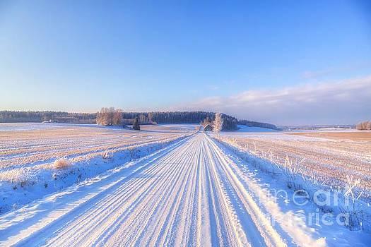 January Day 2 by Veikko Suikkanen