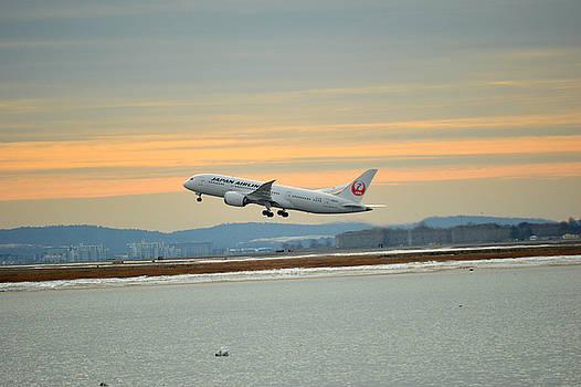 Japan Airlines by Daniel Sullivan