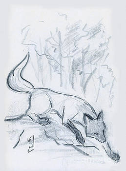 Japanese Fox Sketch by Brandy Woods