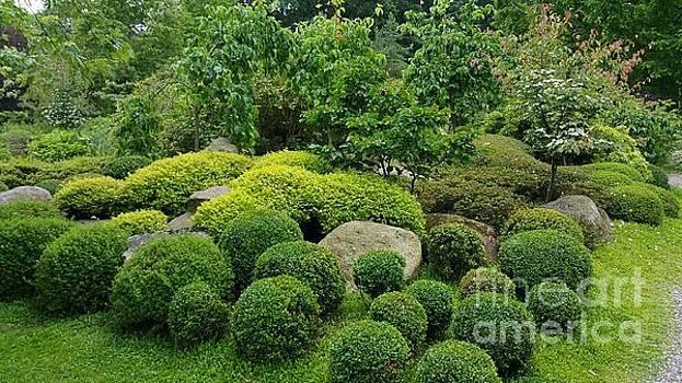 Japanese garden -1 by Susanne Baumann
