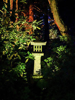 Michael Bessler - Japanese Garden at night