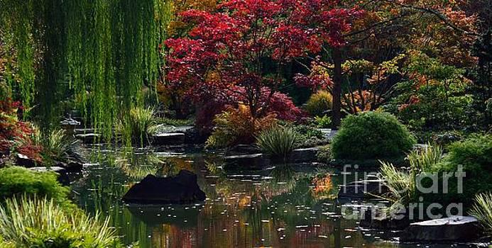 Japanese Garden Dream by Lisa L Silva