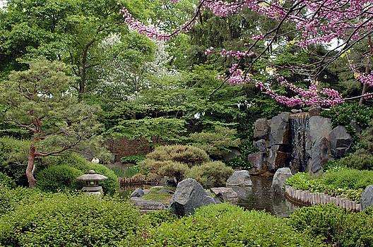Japanese Garden II by Kathy Schumann